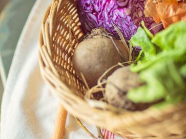 Zöldségek, gyümölcsök élettani hatása